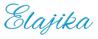 Elajika Inc's Company logo
